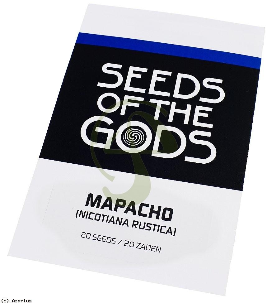 Nicotiana Rustica semillas