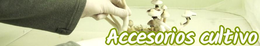 accesorios cultivo de setas